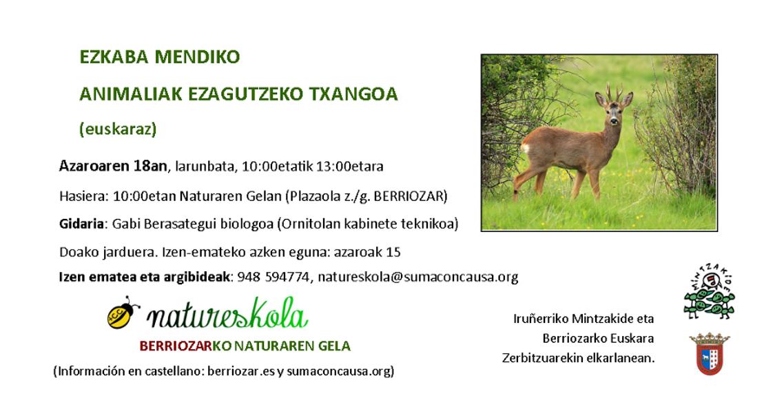 Txangoa: Ezkaba mendiko animaliak ezagutzeko txangoa @ Naturaren gela (Plazaola kalea z/g) Berriozar